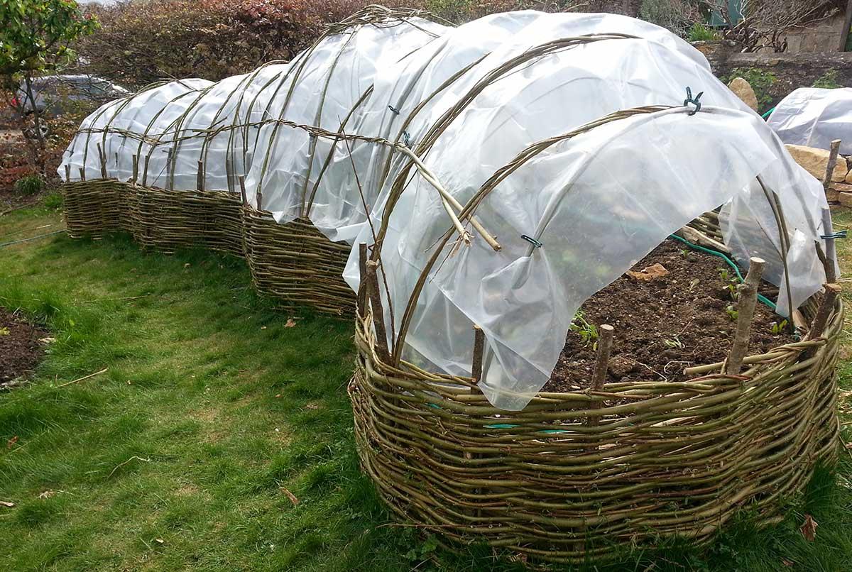 Willow poly-pod - Ayurvedic Permaculture Garden Design, Finstock, Oxfordshire - Gaiaveda Gardens